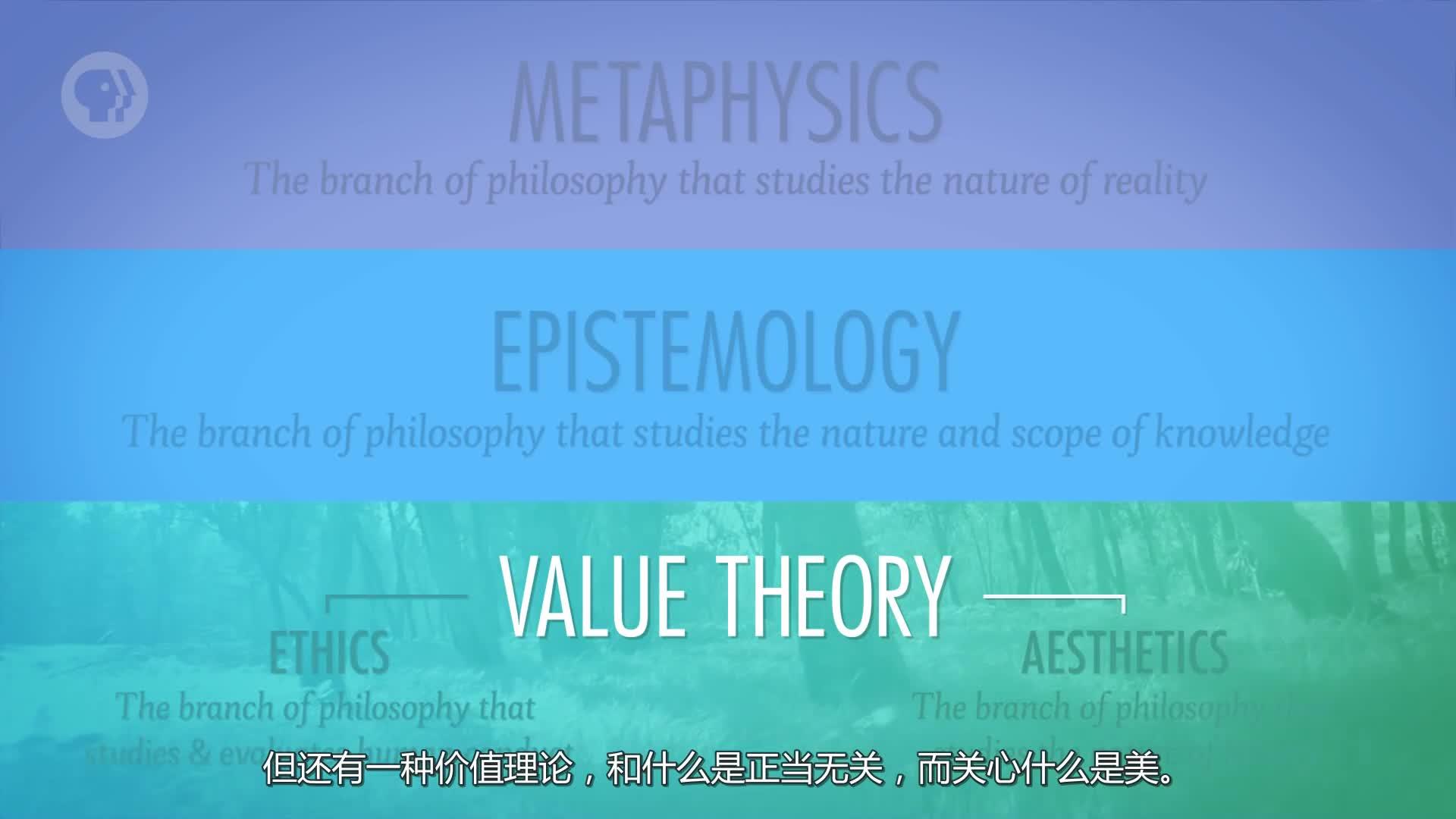 《哲学速成》:什么是哲学