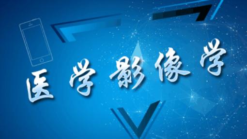 武汉大学徐海波教授:医学影像学